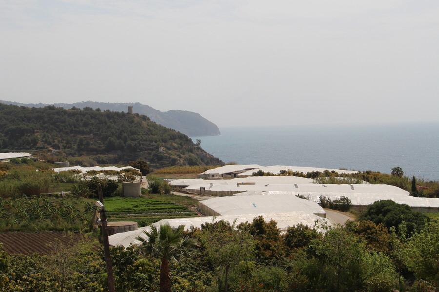 Zona de cultivos hacia los acantilados
