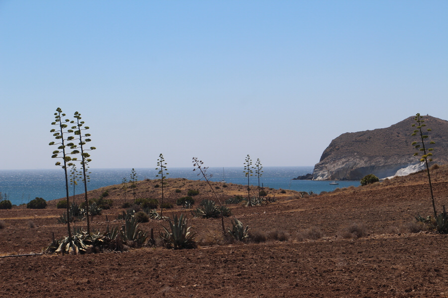 Camino hacia Playa de los Genoveses.